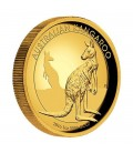 Kangaroo 2016 1oz Gold Proof High Relief Coin