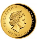 Australian Koala 2014 Gold Proof Coin Series